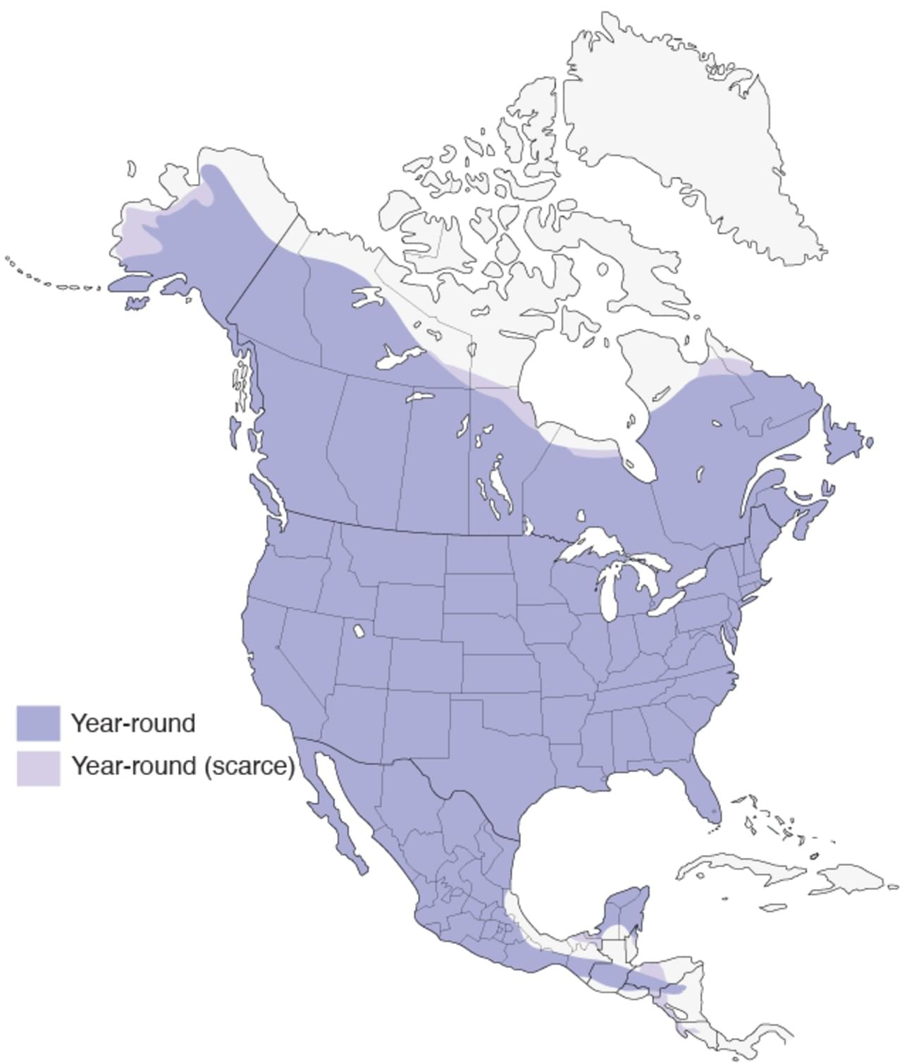 great horned owl map